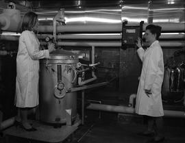 BCIT Food Technology program ; two students using food processing equipment [2 of 2]