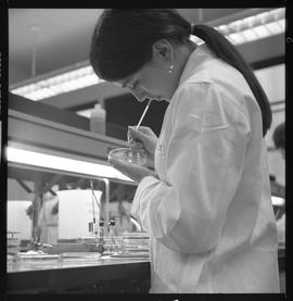 Medical laboratory technology, 1968; student in lab coat examining contents in a petri dish [1 of 2]
