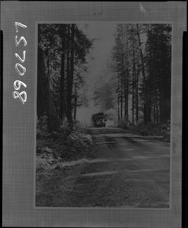 Logging, 1968; copy negative; picture of a truck with carrying logs driving down a logging road