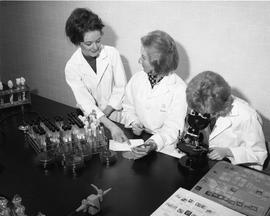 Medical Lab; three women in lab coats sitting at a desk - two women examining a petri dish, one w...