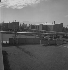Terrace campus, BCVS, 1971; two buildings, covered walkways and lawn area