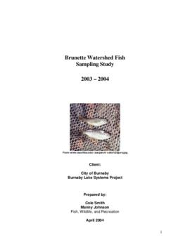 Brunette Watershed Fish Sampling Study 2003-2004