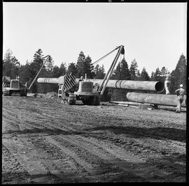 Heavy duty equipment operator, Nanaimo ; two pipelayers lifting a large pipe ; two men watching