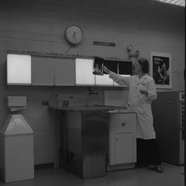 Medical radiography, 1968; woman in a lab coat hanging an x-ray on a light board