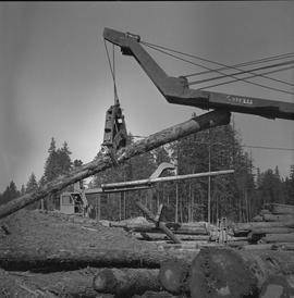 Logging Loading, Nanaimo, 1968; Cypress log lifter moving a log ; man in a log lifter working in ...