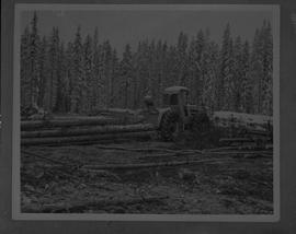 BCIT Forestry; picture of a skidder moving logs in a forest