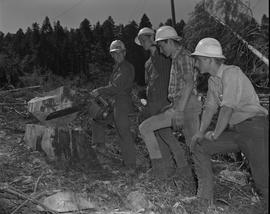 Logging, 1967; a man holding a chainsaw standing next to a cut log ; three men watching