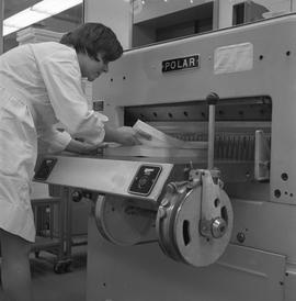 BCVS Graphic arts ; person preparing paper for a paper cutting  [1 of 2]