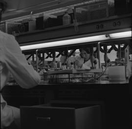 Medical laboratory technology, 1968; student working in a lab [1 of 3]