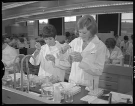 Medical laboratory technology, 1967; two students in lab coats adding liquid to test tubes