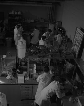 Forest Products, 1966; men in lab coats working in a lab [1 of 2]