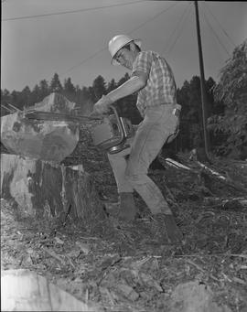 Logging, 1967; a man using a chainsaw to cut a piece of wood