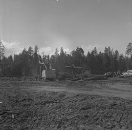 Logging Loading, Nanaimo, 1968; logging area and people working