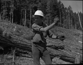 Logging, 1967; a man wearing a hard hat standing in a logging area