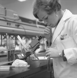 Medical laboratory technology, 1968; female student in a lab coat working in a lab [1 of 2]