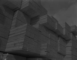 Forest Products; stacks of bundled cut lumber [1 of 2]