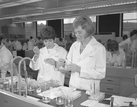Medical laboratory technology, 1967; two students in lab coats adding liquid to test tubes ; stud...