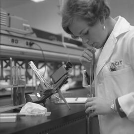 Medical laboratory technology, 1968; female student in a lab coat working in a lab [2 of 2]