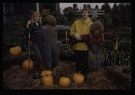 Horticulture 1989, students with pumpkins and scarecrows [1 of 2 photographs]