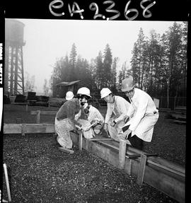 B.C. Vocational School; Carpentry Trades students building foundation forms with instructor (2 of 6)