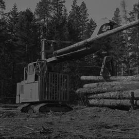 Logging Loading, Nanaimo, 1968; a log lifter moving a log onto a large pile of logs