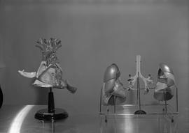 Radiology, X-ray; anatomical models of the human heart and lungs