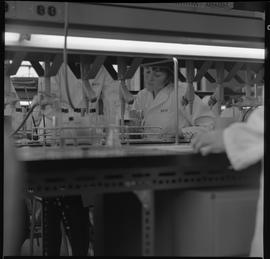 Medical laboratory technology, 1968; students working in a medical lab [1 of 11]