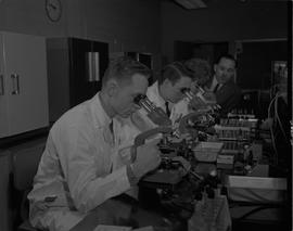 Food Processing Technology, 1966; three students in lab coats looking at slides under microscopes...