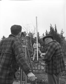 Survey, 1964; three men surveying land above a stone wall in a residential yard [1 of 2]