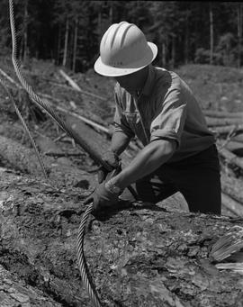 Logging, 1967; a man wearing hard hat putting a lifting cable around a log
