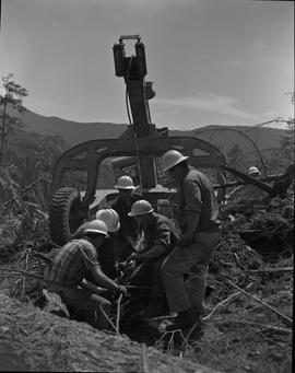 Logging, 1967; a group of men attaching cables to move logs and debris
