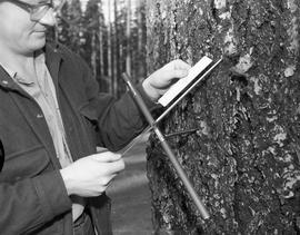 BCIT Programs Forestry Technology ; man holding an instrument to take core samples from a tree an...