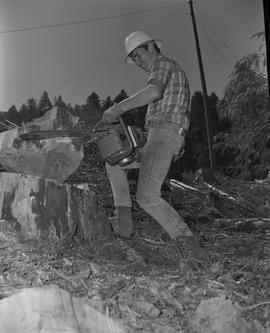 Logging, 1967; a man wearing a hard hat using a chainsaw to cut a piece of wood