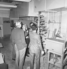 BCIT Programs Forestry Technology ; group of men looking at a fake tree with maple leaves and rem...