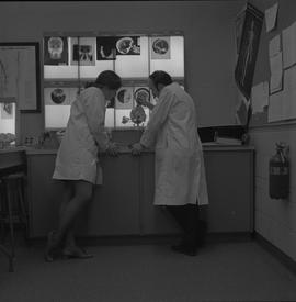 Medical radiography, 1968; two people in lab coats studying a fake human skull ; skull x-rays dis...