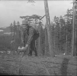 Logging, 1968; copy negative; a man cutting a tree trunk on the ground with a chainsaw