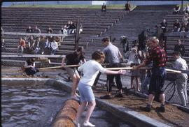 Lumberjack event; two women in a logrolling competition [title cont'd in note]
