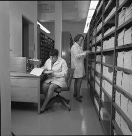 BCVS Graphic arts ; woman working at a desk ; woman organizing paper on a shelf [2 of 3]