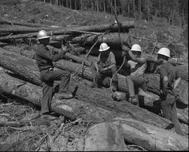 Logging, 1967; four men wearing hard hats sitting on and standing next to logs