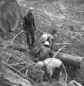 Logging, 1969; a man standing on a log ; three men working