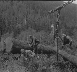 Logging, 1968; copy negative; three men attaching lifting cables to logs