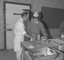 Meat cutting, 1968;  instructor talking to a student holding a knife and chunk of meat
