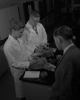 Food Processing Technology, 1966; two students wearing lab coats examining petri dishes under mic...