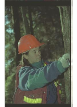 Feb 1996 First Nation, woman wearing hardhat and working in forest