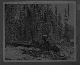 BCIT Forestry; picture of a person driving a skidder moving logs in a forest